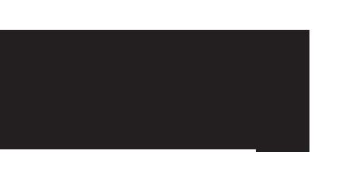 Thirteen Strings Chamber Orchestra logo